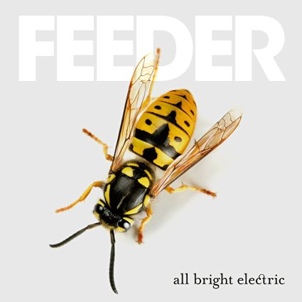 feeder-all-bright-electric